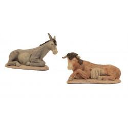 Buey y mula para nacimiento